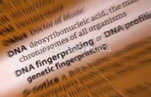 Perfil Genético Individual